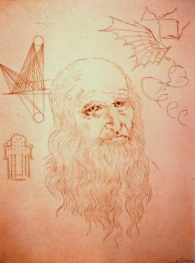 Léonard de Vinci  tiré en 15 exemplaires    50x65 vendue encadrée  avec certificat d'authenticité