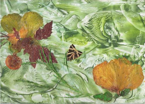 HIBISCUS JAUNES Fleurs et papillon