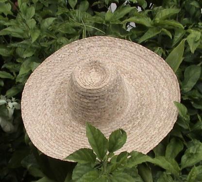 Chapeau du jardin bord 15cm et bord plat en fibres de Bakoua N°8