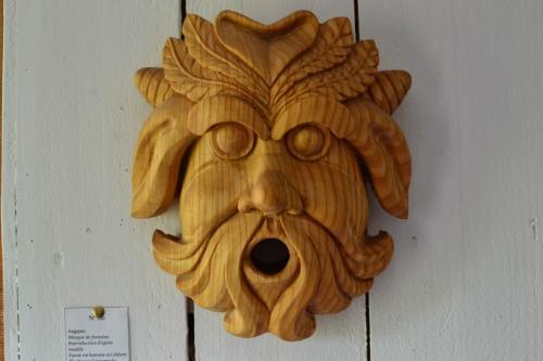Masque de fontaine: eagipan