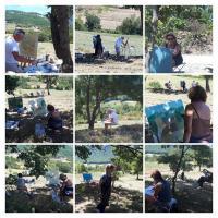 Actualité de Nadine Nacinovic Artiste Peintre Stage Peinture Paysage dans la Drome/3 jours 210€ Matériel inclus
