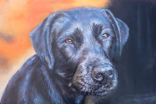 labrador noir  tableau de peinture sculpté au mortier en 3D sur toile en vente sur mon site