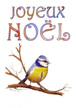 carte MEZ - Noël Mésange bleue