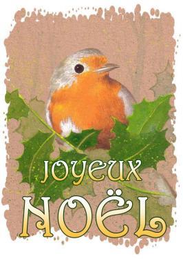carte MEZ - Noël Rouge-gorge houx