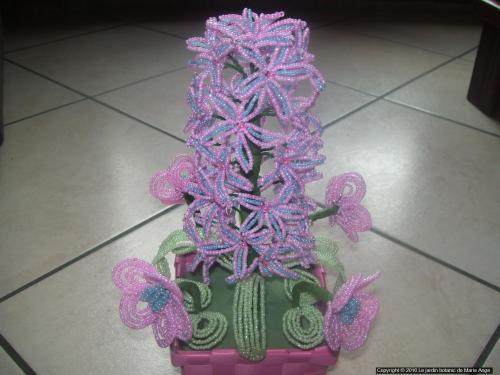 Panier avec une grande jacinthe (grandeur nature) et de 4 petites roses de noel. Possible de realiser la meme composition dans une autres couleur. Prix 25 euros