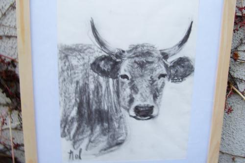 La vache qui ne rit pas, fusains