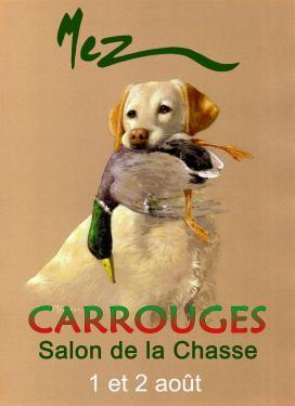 affiche - Carrouges