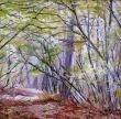 HUILE SUR TOILE : DOUCEUR FORESTIERE
