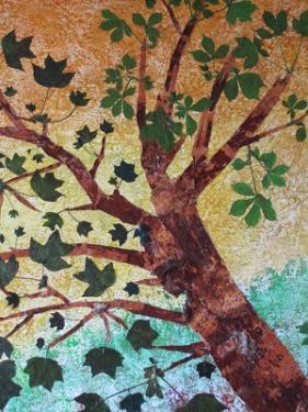 VIEUX COUPLE D'ARBRES - Ecorce de bouleau  - Tulipier de Virginie - Marronnier - 80/70cm.  Est-il possible qu'ils aient poussé si longtemps unis ? aussi l'un près de l'autre ?       Comme Philémon et Baucis que Zeus avait transformés en arbres unis par un seul tronc !