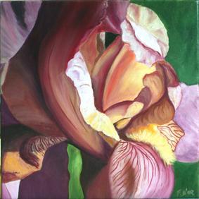 Huile sur toile 30x30 cm: Iris (2)