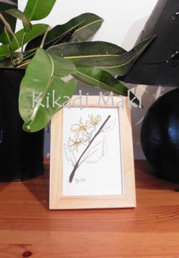 Branche d'Ylang  Dimensions : env. 13x18cm