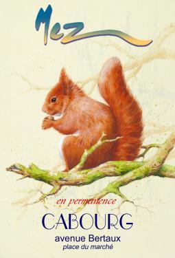 affiche - écureuil MEZ Cabourg