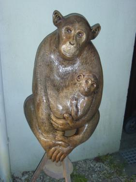 chimpanz� r�alis� en taille directe dans du noyer . hauteur 80 cm. poids 40 kgs