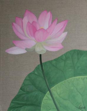 Huile sur toile 50x40 cm: Lotus (1)