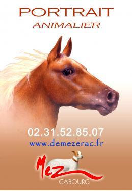 sur commande - art animalier cheval