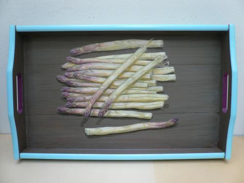 plateau rectangulaire, 31X43 acrylique sur bois. asperges en trompe-l'oeil.