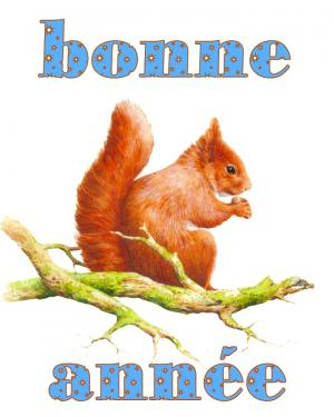 carte MEZ - Bonne année écureuil