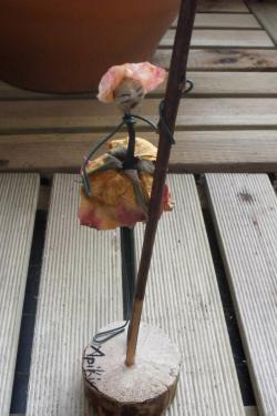 Détail d'une rose
