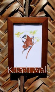 Maki veilleur sur sa branche  Dimensions : env. 13x18cm