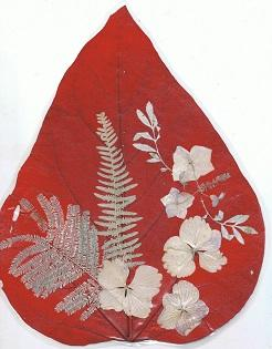 Catalpa rouge et hortensia