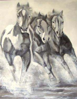 .les chevaux de la mer