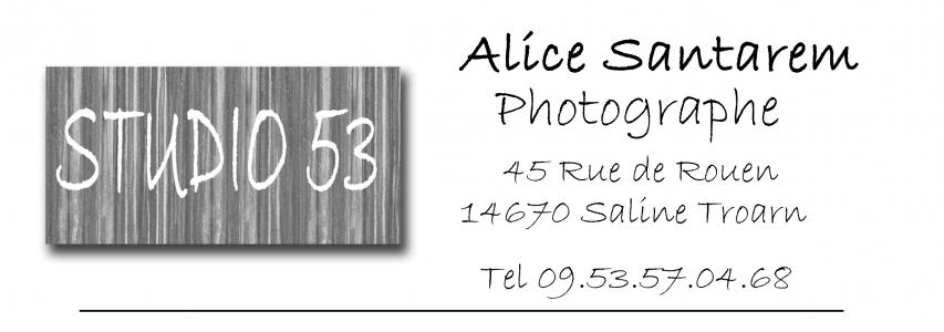 Logo de Alice Santarem Studio 53