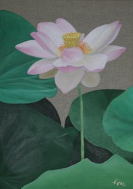 Huile sur toile 70x50 cm: Lotus (3)