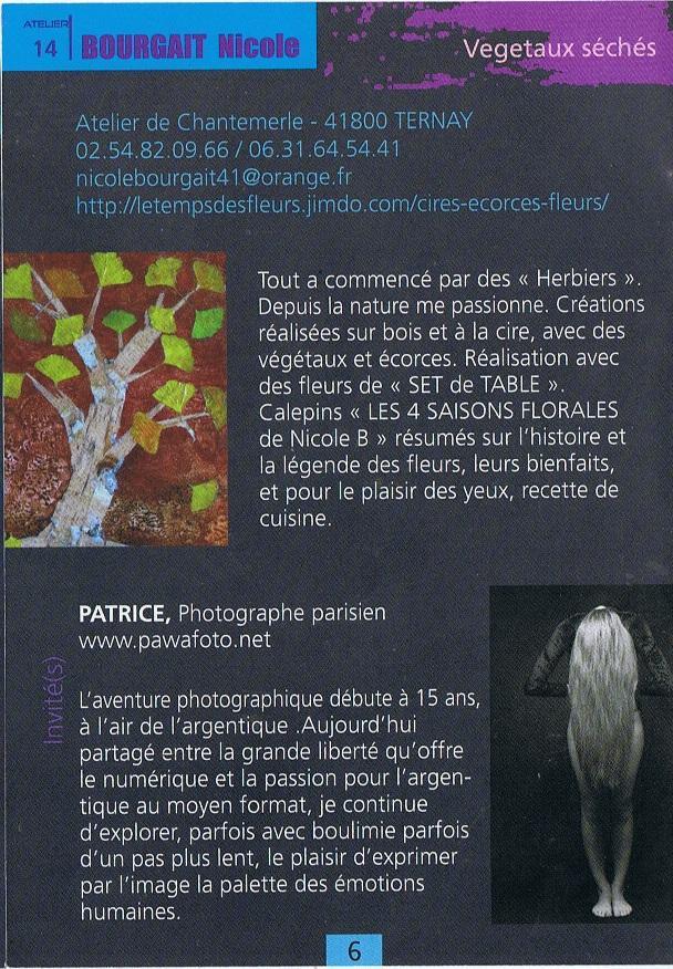 Actualité de NICOLE BOURGAIT CONCEPT VEGETAL INSTALLATION DE L'EXPO DE PATRICE PAWA