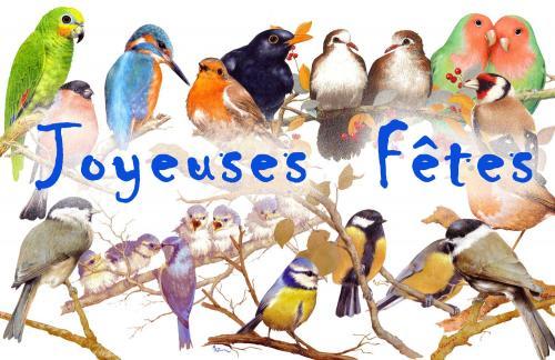 carte MEZ - Joyeuses fêtes Oiseaux