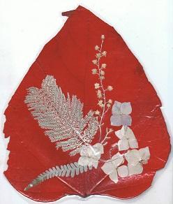 Catalpa rouge avec mimosa blanc