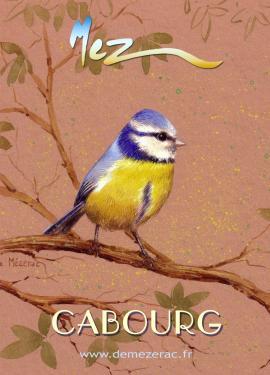 affiche - més.bleue MEZ cabourg