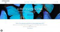 Actualité de Florent RAGOIS 6 PATTES EN SCÈNE Nouvelle boutique en ligne