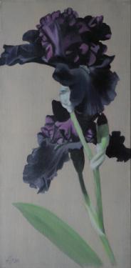 Huile sur toile 60x30 cm: Iris noirs