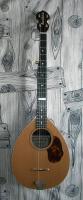 Actualit� de LOWELECTRIC Maxime MORAND Luthier Guitare Pr�sentation du mandoline-Banjo sur Laguitare.com