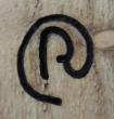 Logo de romuald clemenceau les bois de lapassion