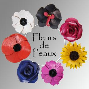 Logo de Michel Leulier FLEURS DE PEAUX