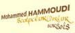 Logo de HAMMOUDI MOHAMMED