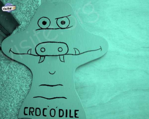 Logo de odile culié CROC-O-DILE