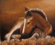 Logo de pierre-jean laurence l'atelier du cheval