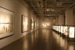 Exposition Li Chevalier au  Mus�e Des Beaux Art de Shanghai