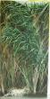 Logo de Peintre en décors, Sophie LAFEUILLADE