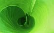 Logo de Marie et Pascal CRANGA Bois et Buis pour la Facture Instrumentale