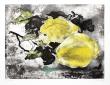 Soleil en Catalogne Barbara, Dali, Miro, Picasso, Tapies