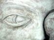 Logo de stamrad selim