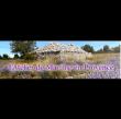 Logo de Atelier de Martine en Provence