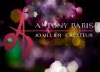 Logo de Antony GUILLEMETTE-SAKA ANTONY sarl